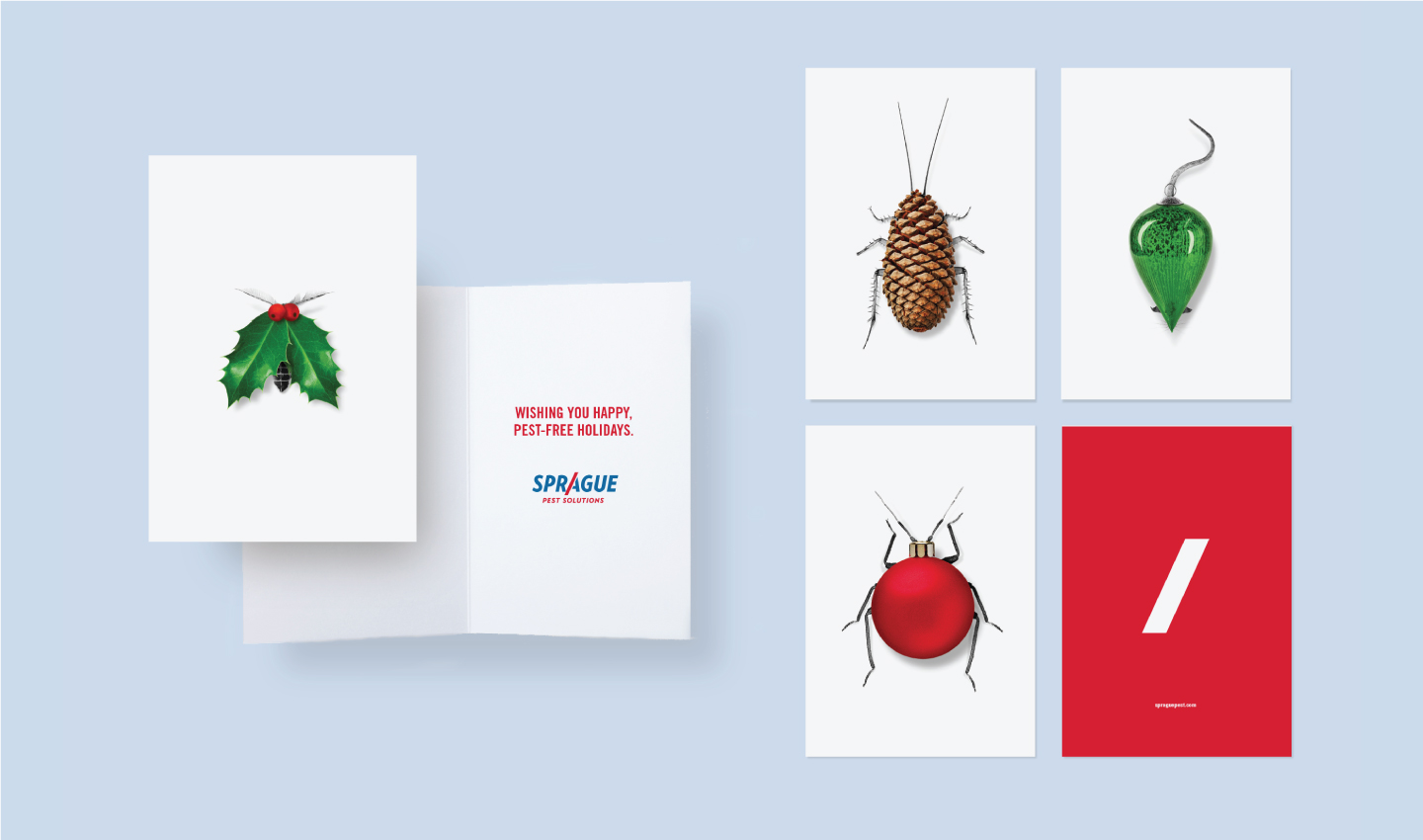 Sps case study holidaycards2017
